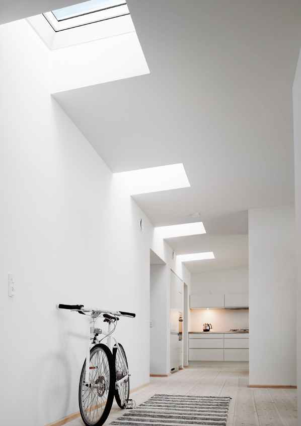 royal_finestre_tetto_velux55